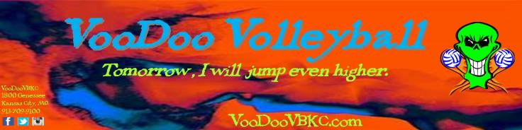 Banner 6 26 at 626pm from Kerry with Sherri Edits just skull logo without voodoo volleyball words
